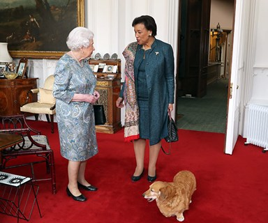 The Queen's corgi just crashed a very important meeting and it was amazing