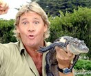Steve Irwin is getting a Hollywood Walk Of Fame Star... You bloody beauty!