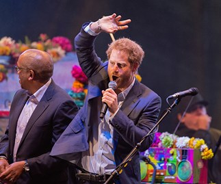 Inside Prince Harry's $1.34million bucks party in the Swiss alps