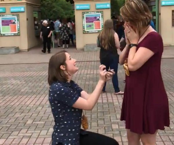 This adorable couple surprised each by planning to propose at the same time and it's all caught on video
