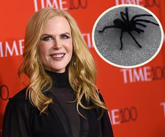 """Mum! Step back! It's going in the pool!"" Nicole Kidman rescues her family from an unwanted visitor"