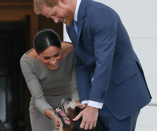 Happy birthday to Prince Harry! We're hoping he's enjoying the day with Meghan and their new pup Oz.