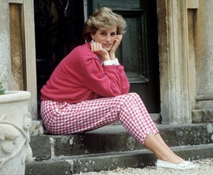 The seat belt theory that could have saved Princess Diana's life