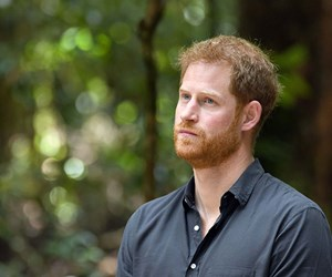 Prince Harry's in Paradise as he unveils the Queen's Canopy on Fraser Island