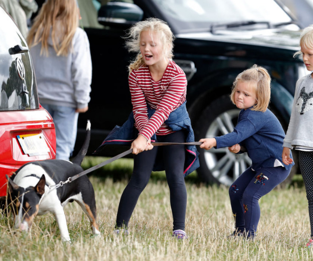 Savannah Phillips, Mia Tindall and Isla Phillips struggle to control their grandmother's (Princess Anne, Princess Royal) bull terrier dog