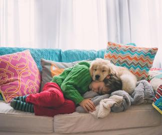 10 Child-friendly dog breeds to know