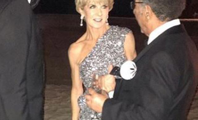 Julie Bishop stuns at Karl Stefanovic's lush Mexico wedding