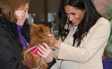Duchess Meghan cuddles puppies at her first Mayhew animal charity visit
