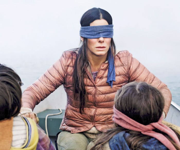Oscar winner Sandra Bullock tells why she took a chance on starring in Netflix's scary movie Bird Box