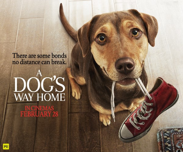 Win a family pass to see A Dog's Way Home
