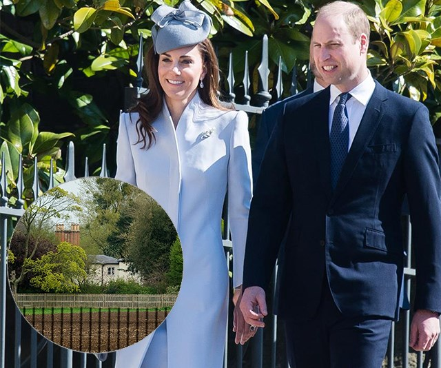 Prince William and Duchess Catherine's secret visit to Frogmore Cottage REVEALED - did they meet Baby Sussex?