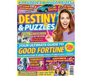 Take 5 Destiny & Puzzles