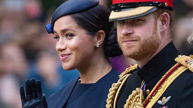 Prince Harry and Duchess Meghan's plans for new charity revealed