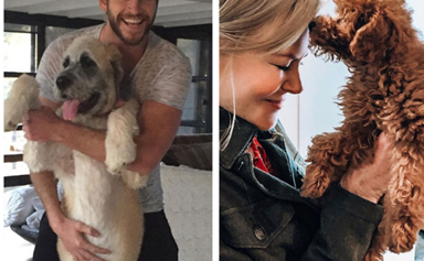 See the most adorable photos ever of celebrities and their pets
