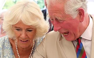 Duchess Camilla just tried her hand at baking, and the results were... surprising