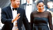 Prince Harry and Duchess Meghan just dropped an exciting new update