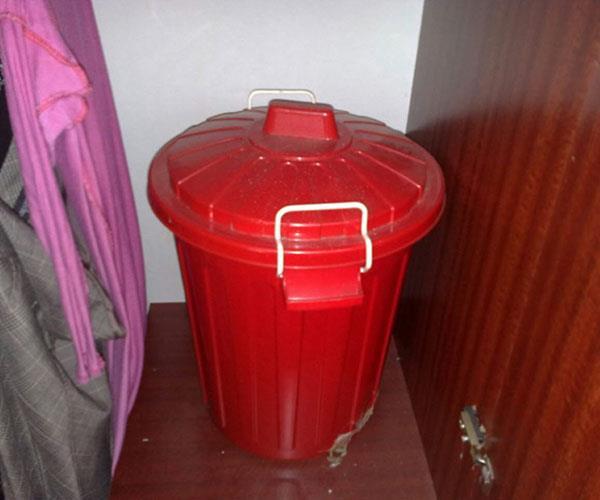 Real life: I found my worst nightmare in my mum's bin
