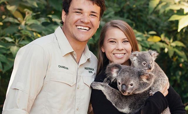 Bindi Irwin and Chandler Powell's $10 million wedding at Australia Zoo