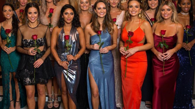 EXCLUSIVE: Current Bachelor and Bachelorette contestants are ALREADY forming alliances for Bachelor in Paradise