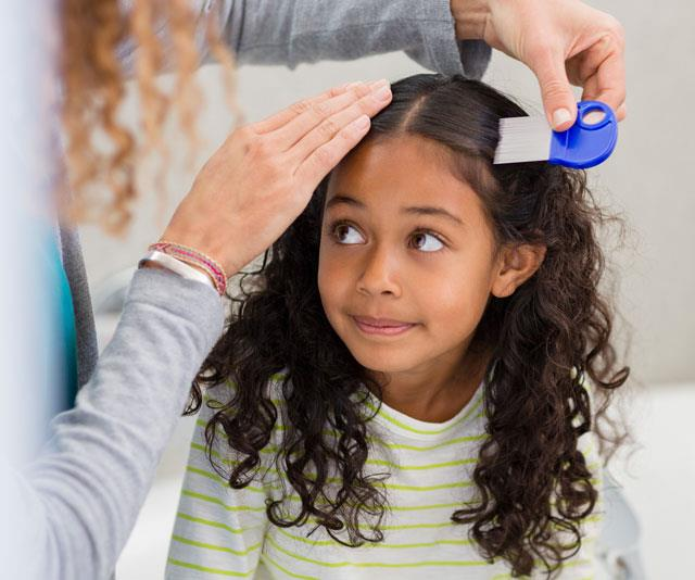 How to treat the new breed of 'super' head lice