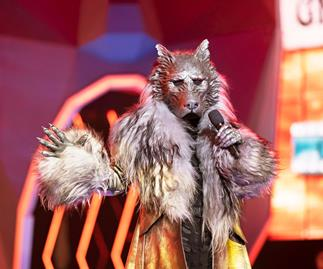 Which celebrities are behind the masks on The Masked Singer Australia?