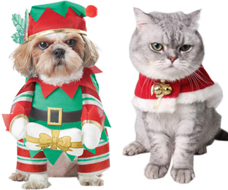 The most ridiculous pet Christmas outfits guaranteed to give you a chuckle