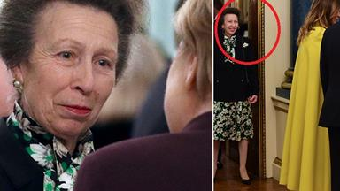 Did Princess Anne really snub Trump? A witness finally reveals what happened