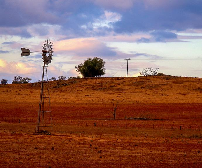 How you can help farmers and communities affected by the drought this Christmas