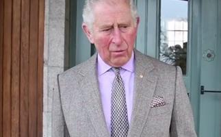 Prince Charles' rare video message about the Australian bushfires subtly reflected the changing monarchy