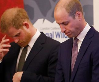 Prince William and Prince Harry issue an emotional joint statement about false claims