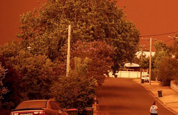 "Real life: The Mallacoota bushfires where ""the sky turned black"""