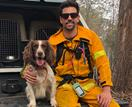 Our canine conservationist: Meet the faithful detection dog saving wildlife left devastated by the bushfires