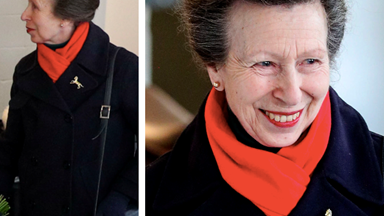 Princess Anne, famed as the hardest-working royal, soldiers on with work in gloves amid coronavirus outbreak