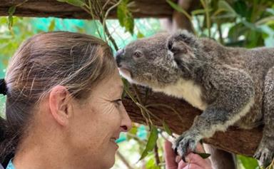 REBULD OUR TOWNS: Meet the grandmother of four saving our Koalas