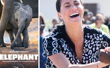 Where to watch Meghan Markle's first Disney film, Elephant, from Australia