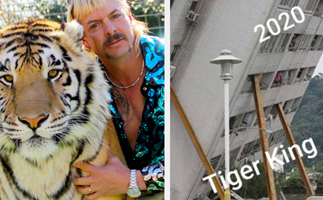 These hilarious memes about Netflix hit Tiger King will genuinely make you laugh out loud