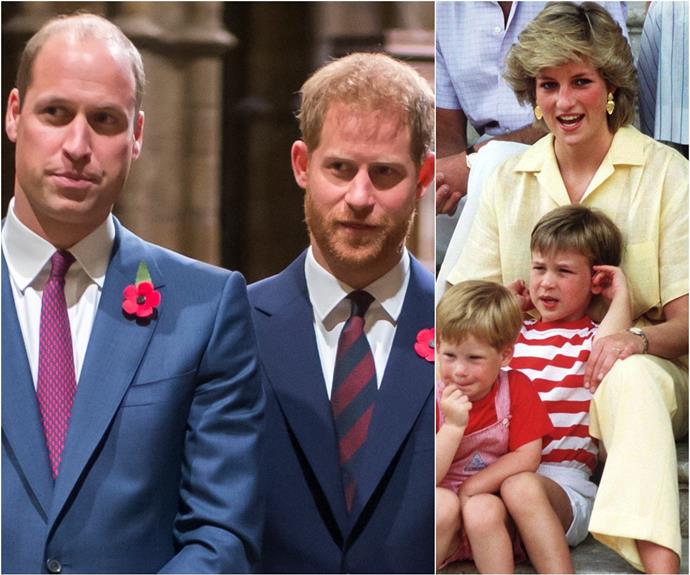 Prince William writes an emotional letter on behalf of himself and Prince Harry, with reference to their mother, Diana