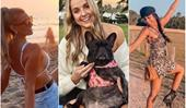 We've reached peak Instagram with these sunset + bikini + puppy-clad profiles belonging to the 2020 Bachelor contenders