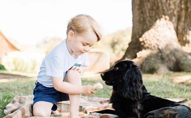 Prince George's sadness over the death of his 'best mate' Lupo