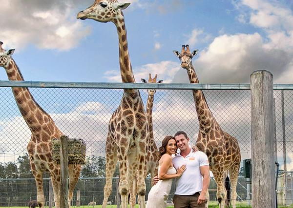 One year since bushfires tore through Mogo Zoo, Australia's favourite zookeeper finds love