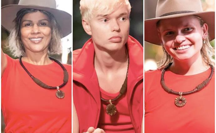 Jigging from the jungle: Here's every celeb who's left I'm A Celebrity in a flurry of half eaten bugs and snake encounters