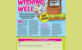 Take 5 Wishing Well
