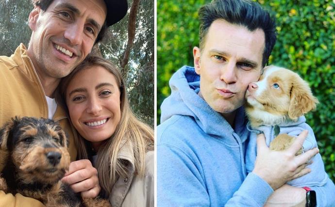 It's a pooch parade! Celebrities share must-see pictures of their dogs to celebrate International Dog Day