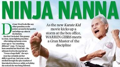 Ninja Nanna
