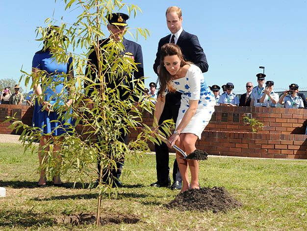 Kate and William plant a tree in the RAAF memorial garden. Photo: Getty Images