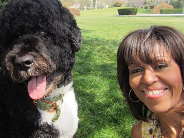 First Lady Michelle Obama poses with Sunny, the family dog.