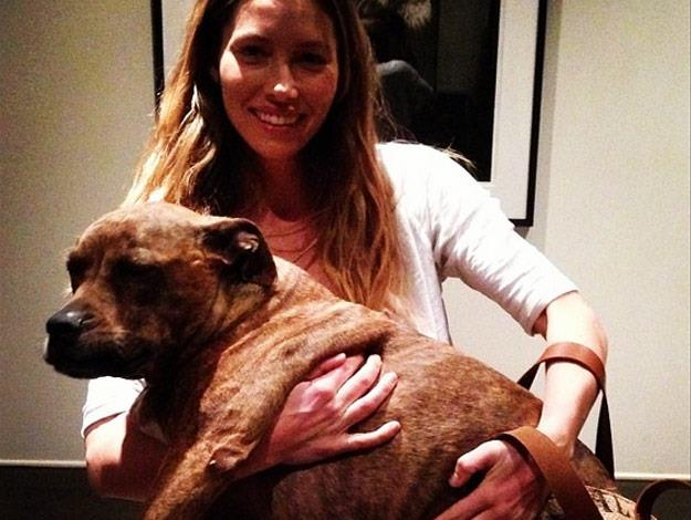 Jessica Biel with her super-cute pooch, Tina.