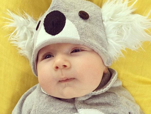 "Sonny looking super-cute in a Koala costume: ""High on gum leaves. As usual."""