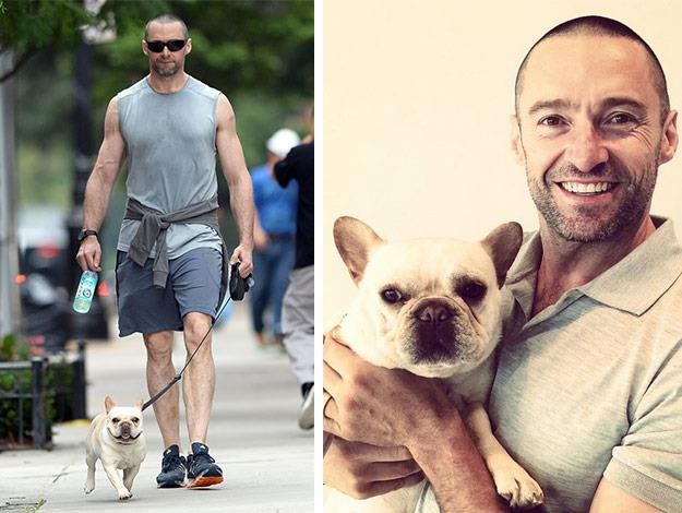 After hitting the gym in Manhattan, Hugh Jackman took his four-legged pal, Dali for a leisurely stroll.