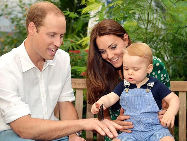 Prince George reaches for a butterfly with his parents William and Catherine in the beautiful official first birthday portrait released by the Royal family to celebrate the occasion.